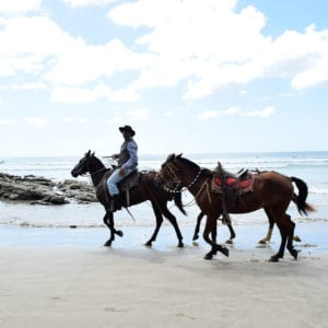 Casa Oro Group Casa-Oro-Group-Experiences-Activities-Eco-Tour-Adventure-Travel-Responsible-Travel-San-Juan-del-Sur-Nicaragua-Horseback-Riding-Playa-Maderas-Rustic-Authentic-Nature-Eco-Conscious-Heritage-300x300 Casa Oro Group
